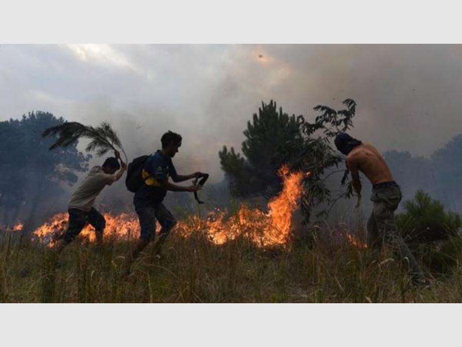 Un incendio arrasó con bosques de Valeria del Mar y Cariló