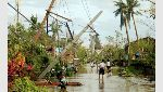 Residents walk past partially toppled electric posts after Typhoon Nock Ten hit Malinao, Albay - NARCH/NARCH30 - Filipinas Tifón