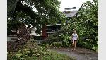 A man walks by a fallen tree after heavy rains in Recreio dos Bandeirantes neighborhood in Rio de Janeiro - río de janeiro Brasil