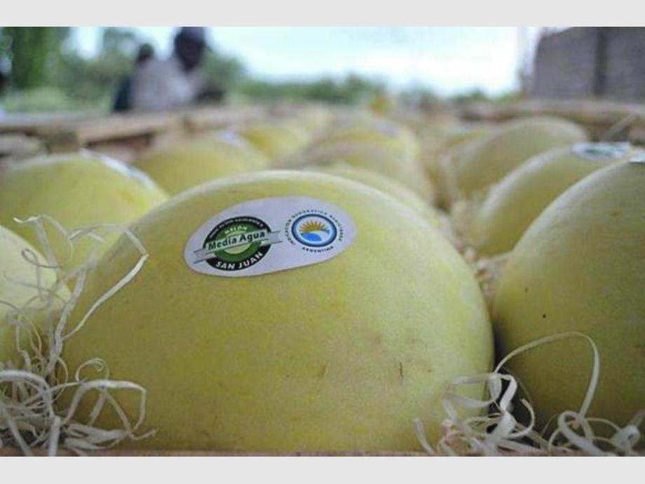 Resultado de imagen para foto de la fiesta del melon en sarmiento san juan