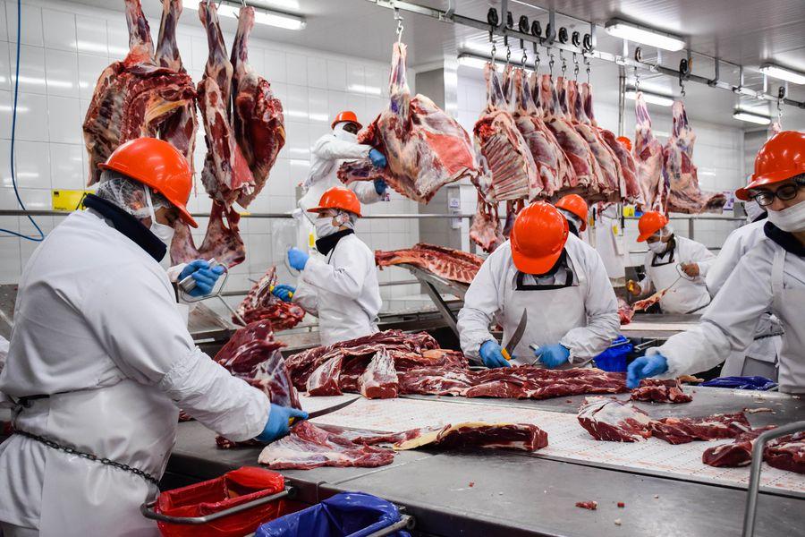 Malestar agropecuario porque el Gobierno extendió las trabas a la  exportación de carnes |