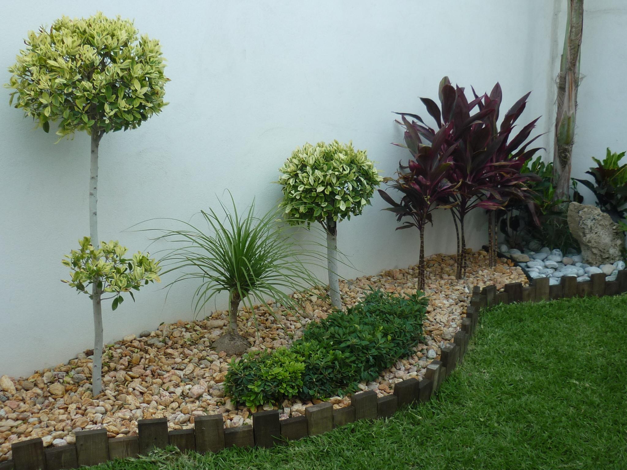 15 jardines encantadoramente peque os para inspirarte - Arbolitos para jardin ...