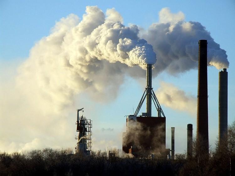 Las emisiones de las industrias, el uso de combustibles fósiles, la desforestación, etc, son fuentes importantes de gas carbónico, causante del calentamie3nto global.