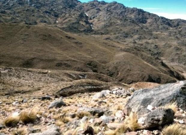 Una nena sobrevivió en un cerro gracias a unas ovejas