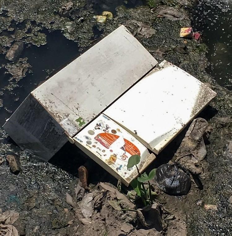 Video impactante: el cadáver de una mujer dentro de una heladera vieja