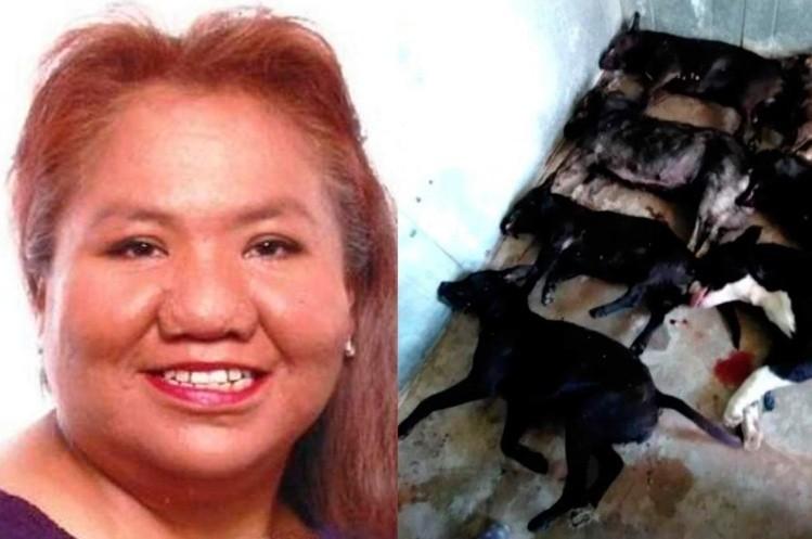 Una mujer murió tras ser atacada por una jauría de perros salchicha