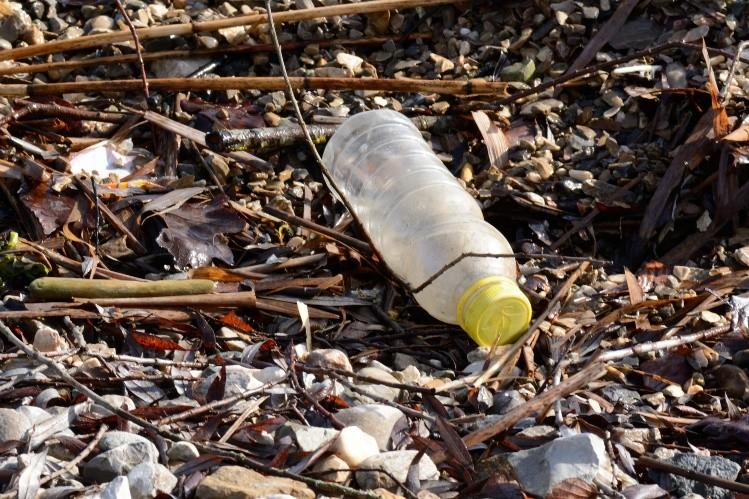 Otorgan a Eusebio Leal Premio Nacional de Medio Ambiente en Cuba