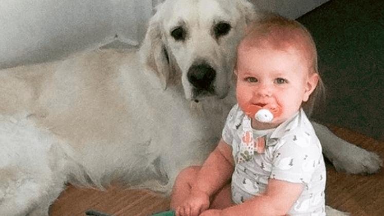 Pusieron una cámara en el cuarto de su beba y descubrieron cómo se fugaba cada noche