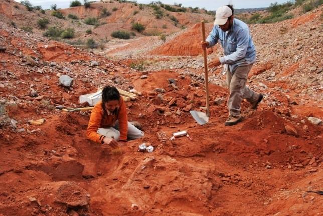 Encontraron el dinosaurio gigante más antiguo de la tierra — San Juan
